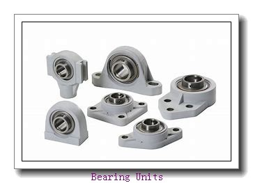 INA RAY17 bearing units