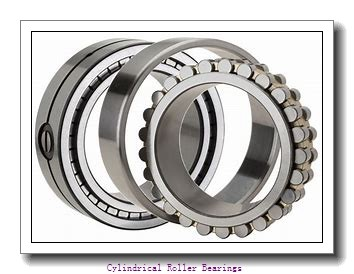 440 mm x 540 mm x 100 mm  NKE NNCL4888-V cylindrical roller bearings