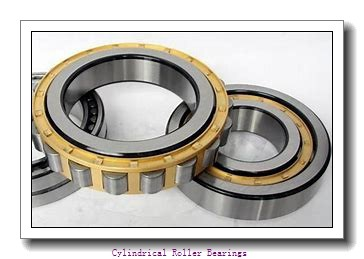 170 mm x 310 mm x 86 mm  NKE NJ2234-E-MA6 cylindrical roller bearings