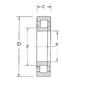 60 mm x 130 mm x 31 mm  FBJ NUP312 cylindrical roller bearings