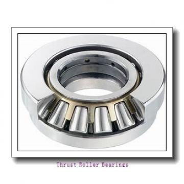 INA RWCT17 thrust roller bearings