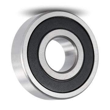 Free Sample, Deep Groove Ball Bearing 6305-2RS 6306 6307 6308 6309 High Speed Motor Bearing 6300 6301 6302-RS 6303 6304 Low Noise Bearing 25X62X17 6201 6202